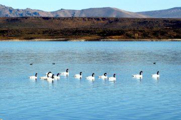 Parque nacional Laguna Blanca