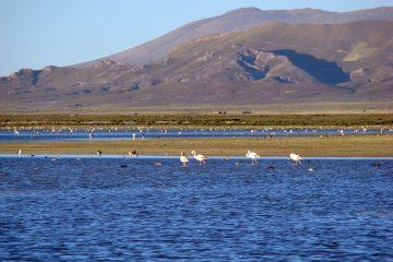 Laguna de los Pozuelos